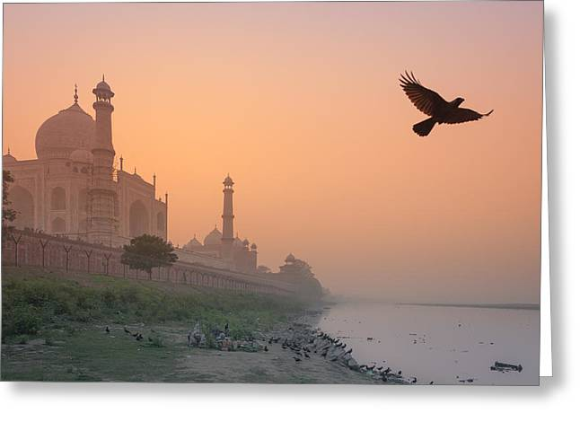 Misty Taj Mahal Greeting Card by Marji Lang