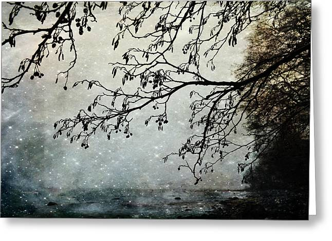 Misty Tide Greeting Card