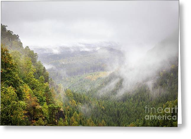 misty view in the Bohemian Switzerland National Park Greeting Card by Julie Woodhouse