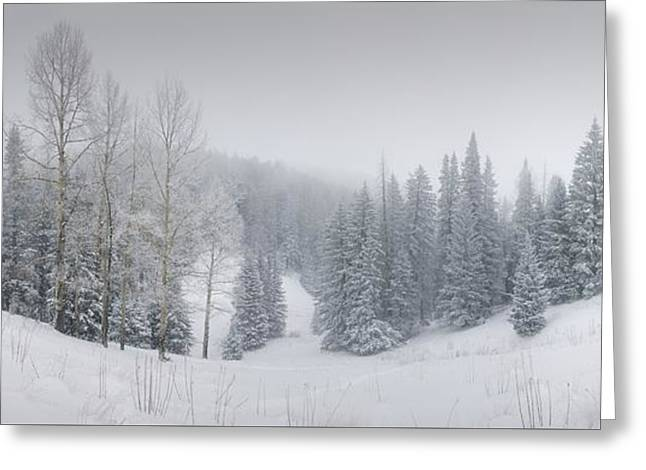 Misty Winter Panorama Greeting Card