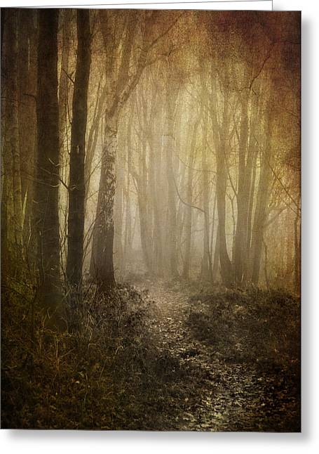 Misty Woodland Path Greeting Card by Meirion Matthias