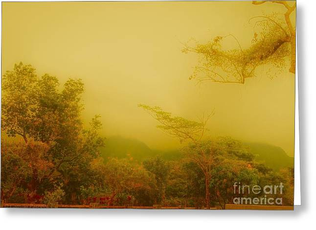 Misty Yellow Hue- El Valle De Anton Greeting Card