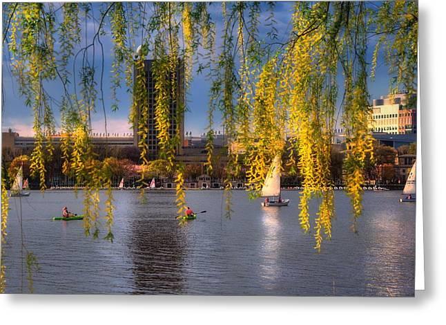 Mit Sailing Pavilion - Boston Greeting Card