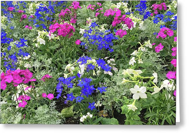 Mixed Flower Garden Greeting Card