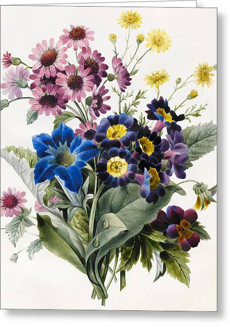 Mixed Flowers Greeting Card by Louise D'Orleans