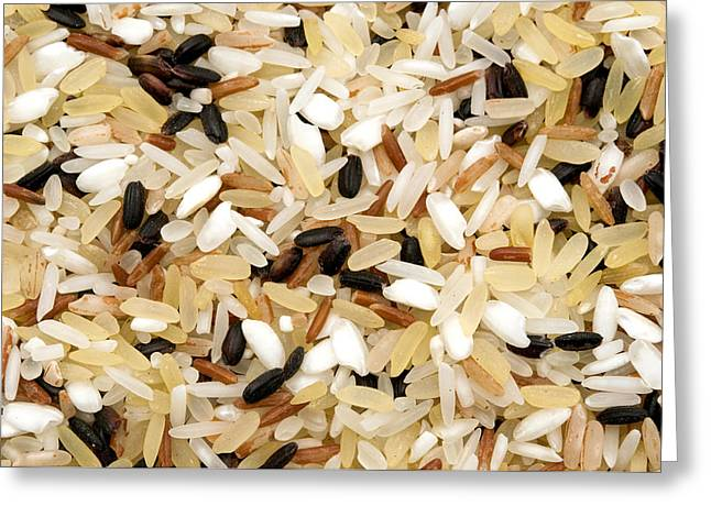 Mixed Rice Greeting Card