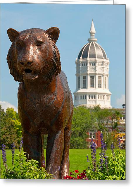 Mizzou Greeting Card