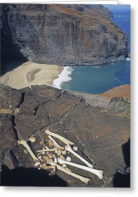 Mmm-117 Hawaiian Chieftans Final Resting Place Greeting Card by Ed Cooper Photography