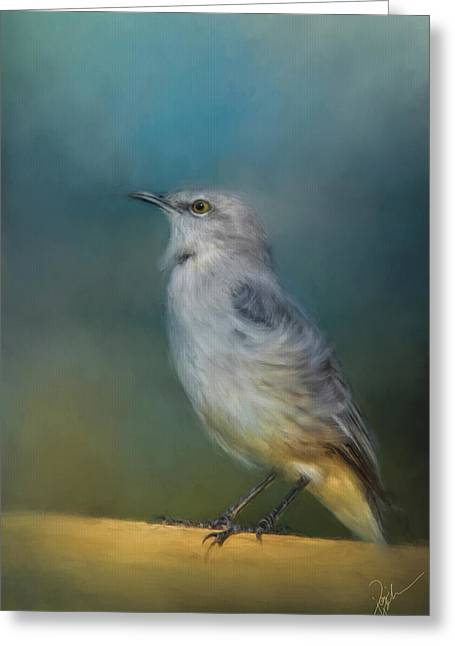 Mockingbird On A Windy Day Greeting Card