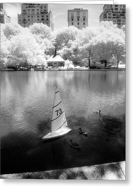 Greeting Card featuring the photograph Model Boat Lake Central Park by Dave Beckerman