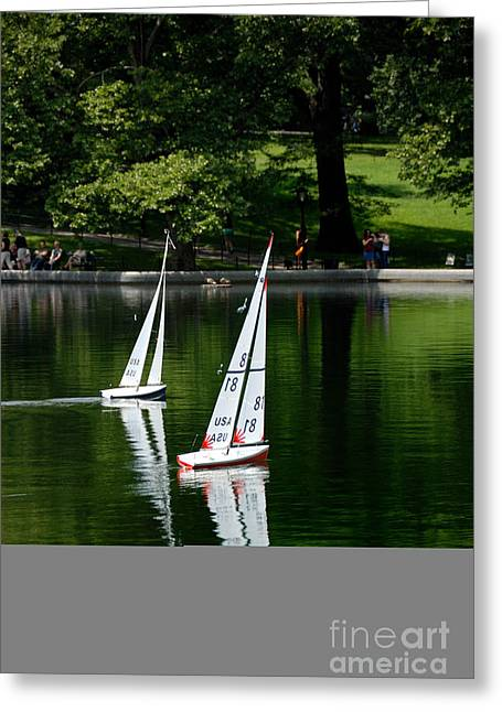 Model Boats Central Park New York Greeting Card by Amy Cicconi