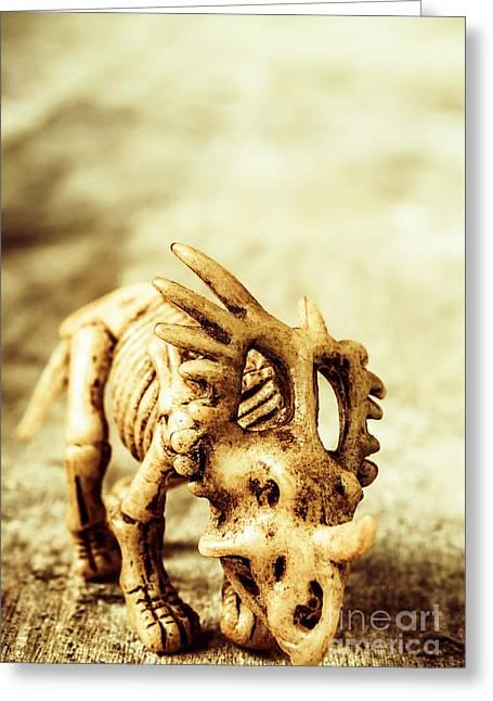 Model Styracosaurus Skeleton Greeting Card