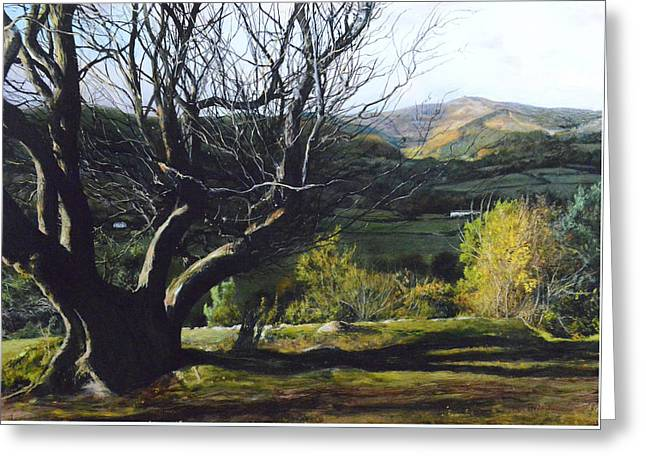 Moel Famau From Loggerheads Greeting Card