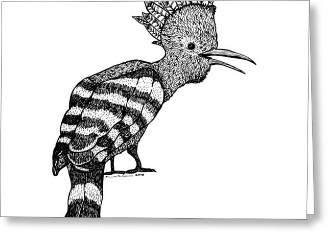 Mohawk Bird Greeting Card