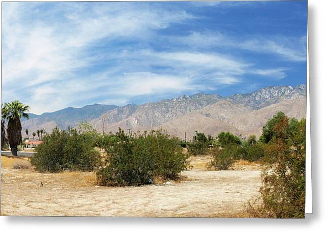 Mojave Pan 2 Greeting Card by Chuck Shafer