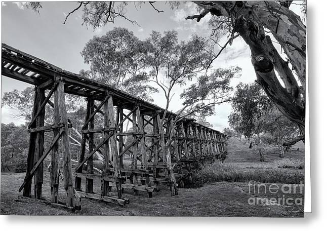 Greeting Card featuring the photograph Mollisons Creek Trestle Bridge by Linda Lees