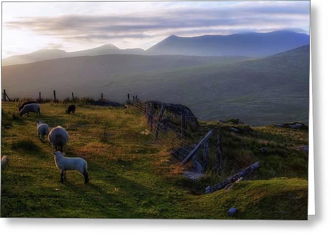 Moll's Gap - Ireland Greeting Card