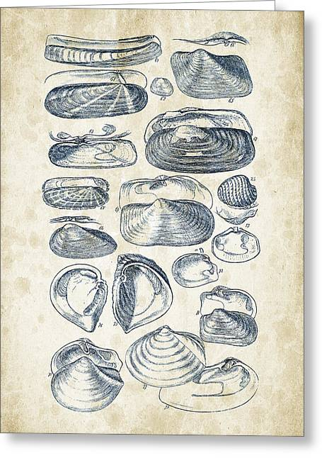 Mollusks - 1842 - 03 Greeting Card by Aged Pixel