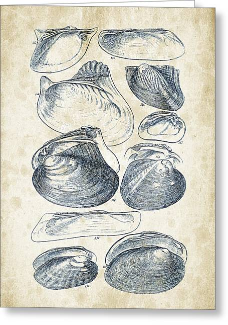 Mollusks - 1842 - 08 Greeting Card by Aged Pixel