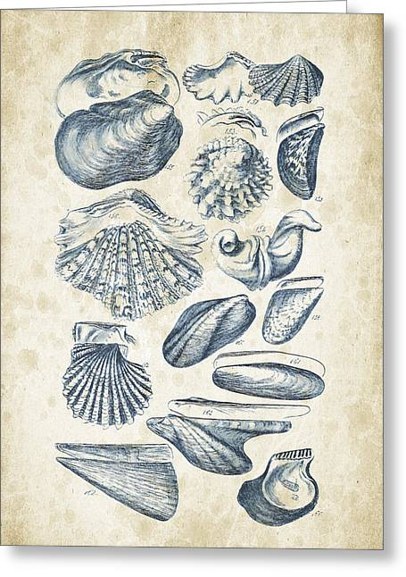 Mollusks - 1842 - 09 Greeting Card by Aged Pixel