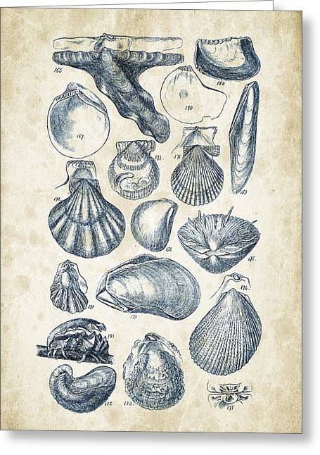 Mollusks - 1842 - 10 Greeting Card by Aged Pixel