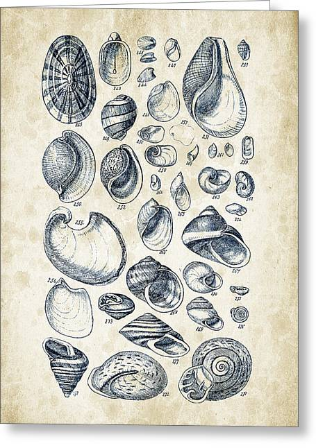 Mollusks - 1842 - 13 Greeting Card by Aged Pixel