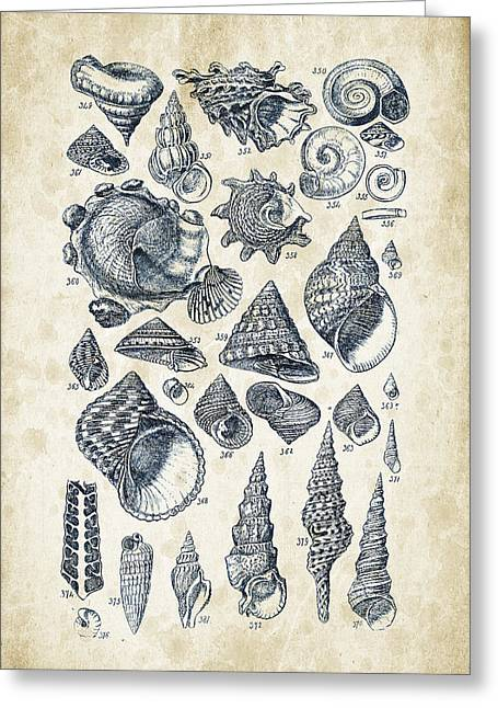 Mollusks - 1842 - 16 Greeting Card by Aged Pixel