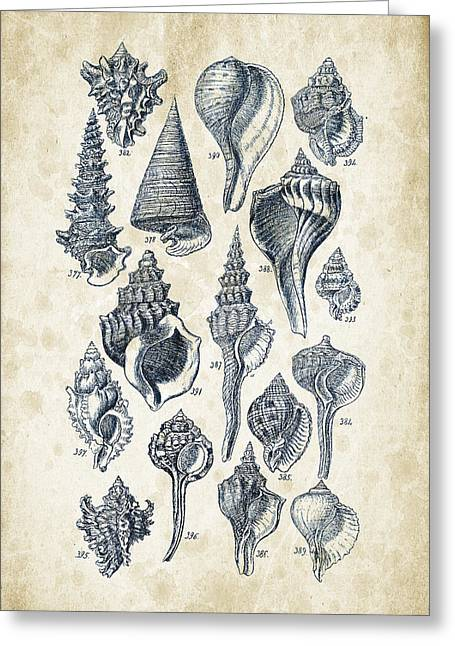 Mollusks - 1842 - 17 Greeting Card by Aged Pixel
