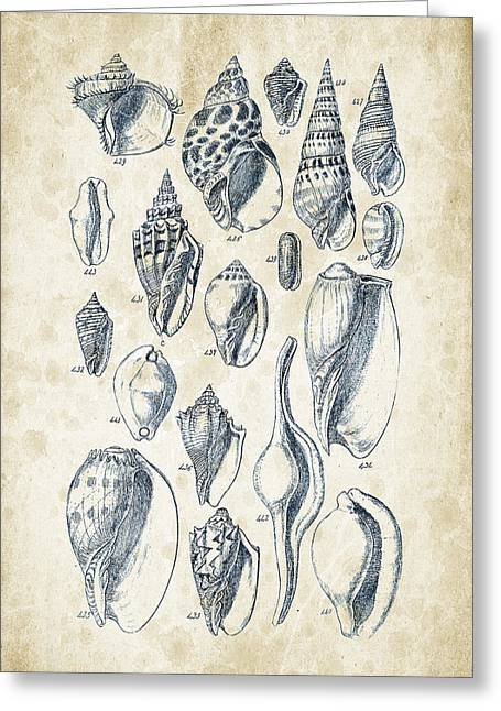 Mollusks - 1842 - 20 Greeting Card by Aged Pixel