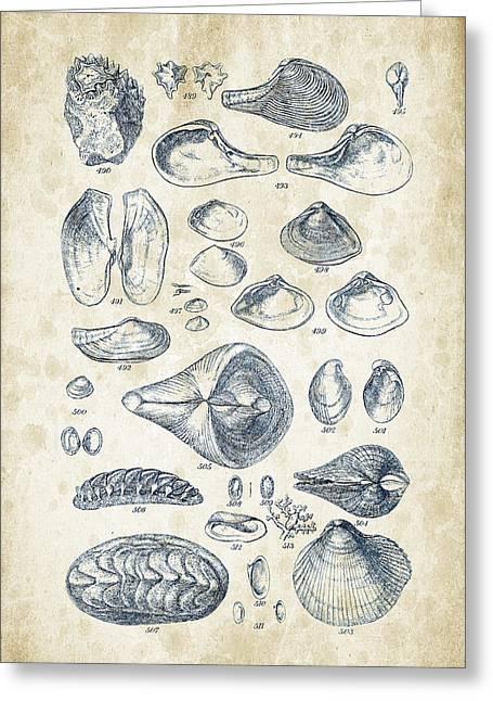 Mollusks - 1842 - 24 Greeting Card