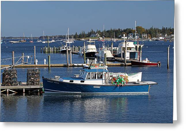 Molly Hock Of Southwest Harbor Greeting Card by Juergen Roth