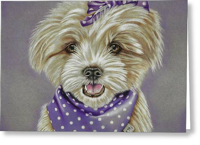 Molly The Maltese Greeting Card by Karrie J Butler