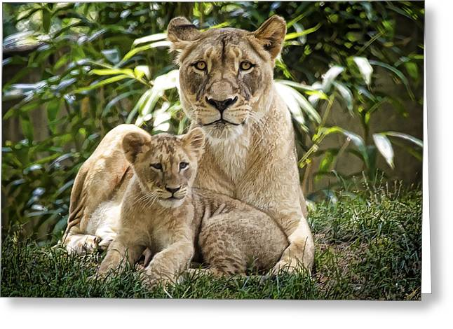Mom And Baby Greeting Card