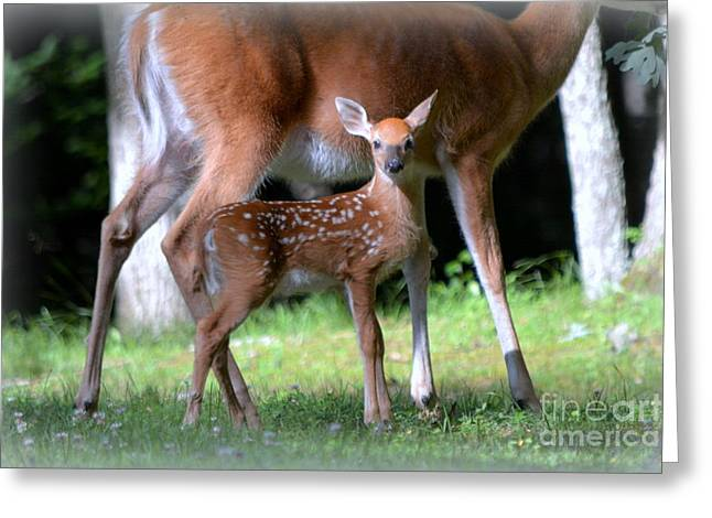 Mommy And Me Greeting Card by Brenda Bostic