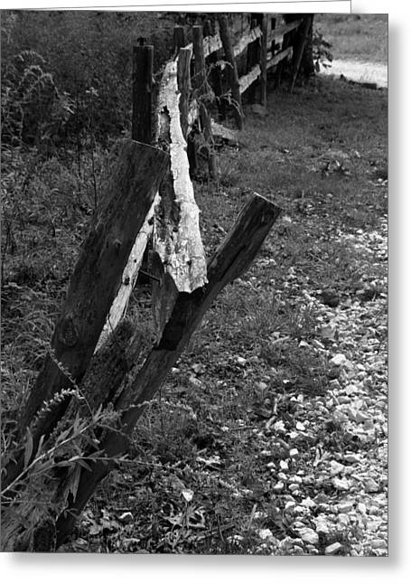Momsvisitfence2 Greeting Card by Curtis J Neeley Jr