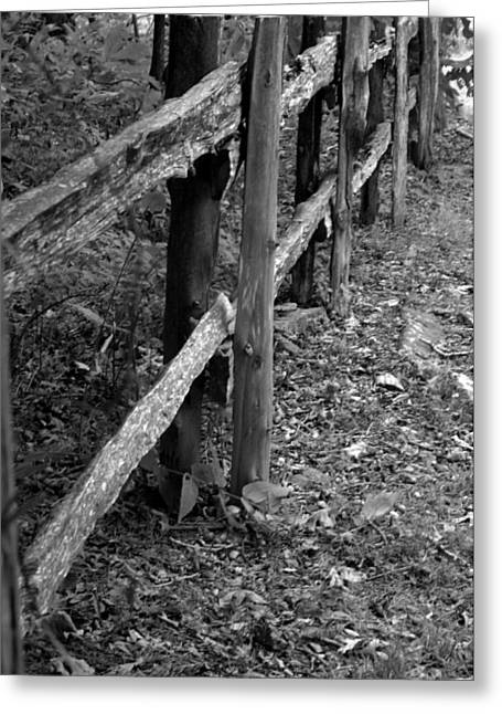 Momvisitfence-carterlane Greeting Card by Curtis J Neeley Jr