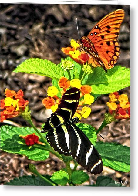 Monarch Butterfly And Zebra Butterfly Greeting Card by Susan Savad