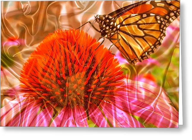 Monarch Mirage Greeting Card by Randy Rosenberger