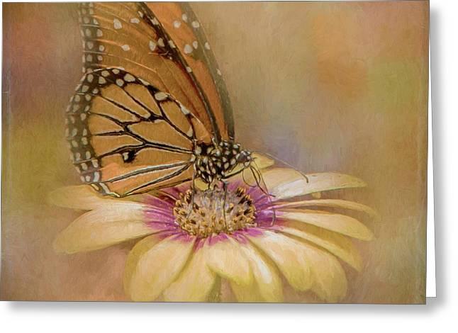 Monarch On A Daisy Mum Greeting Card