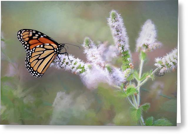 Greeting Card featuring the photograph Monarch On Mint 1 by Lori Deiter