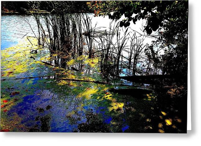 Monet Ice Age Pond Greeting Card