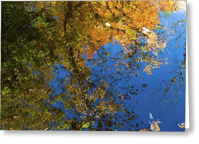 Greeting Card featuring the photograph Monet's Autumn Pool by Lon Dittrick
