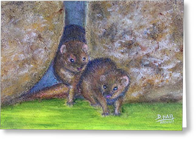 Mongoose #511 Greeting Card by Donald k Hall