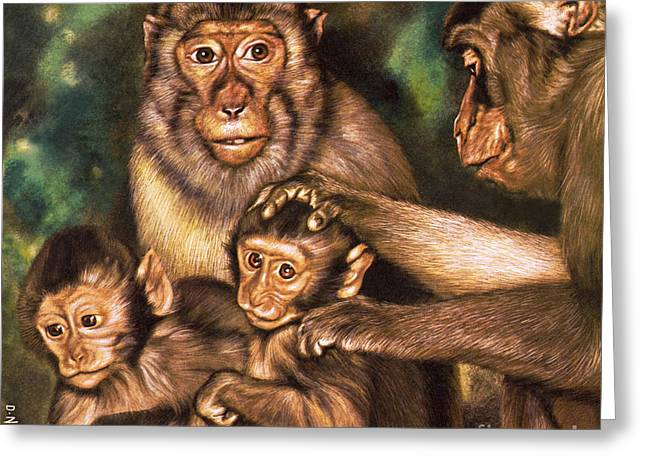 Monkey Family Greeting Card