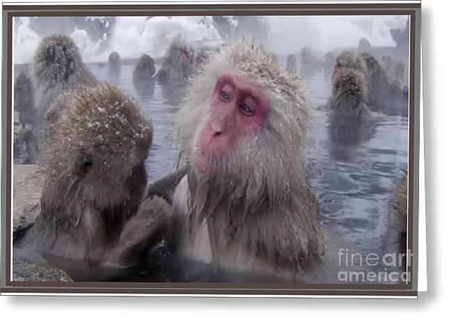 Monkey Leisure Time Greeting Card