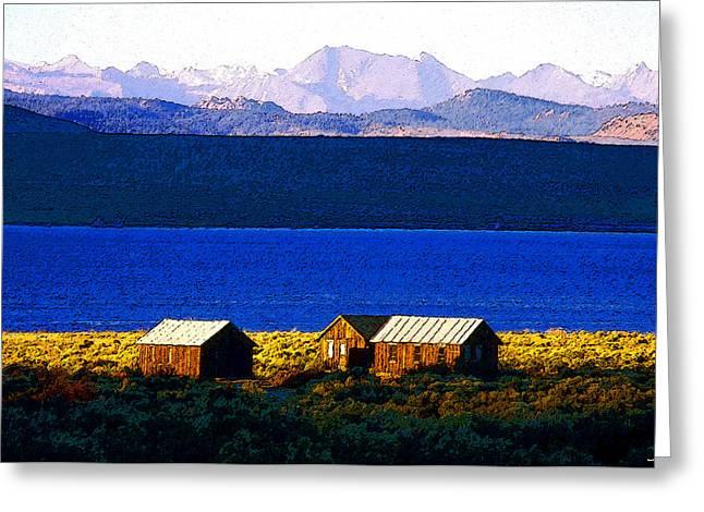 Mono Lake Cabins Greeting Card by David Lee Thompson
