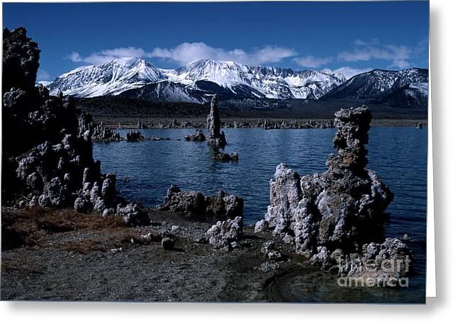 Mono Lake-signed Greeting Card