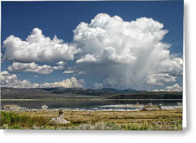 Mono Lake Summer Shower  Greeting Card by Tom Kidd