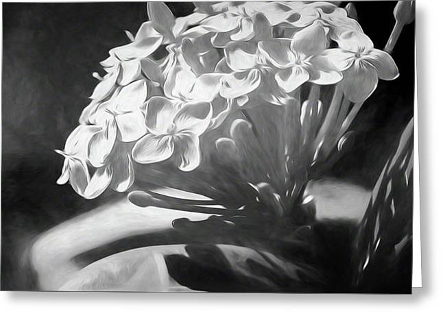Monochrome Flora Greeting Card