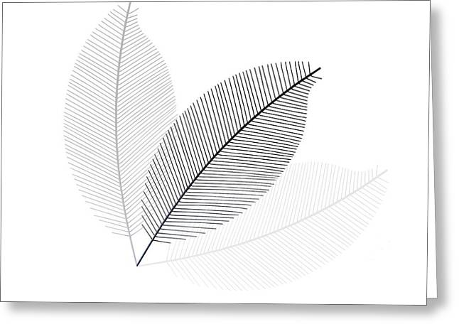 Monochrome Leaves Greeting Card